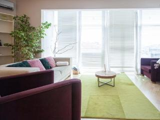 Great cihangir apartment with old city view terrace - Istanbul vacation rentals