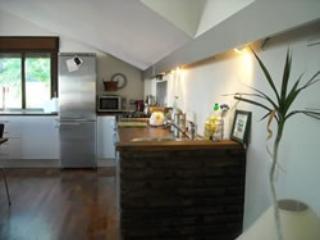 Open plan living area - Contemporary penthouse - Benalmadena - rentals