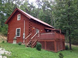 Turkey Cove Cabin - Stanton vacation rentals