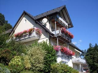 Vacation Apartment in Forbach (Baden) - 1076 sqft, natural, quiet, panoramic location, Nationalpark… - Langenbrand vacation rentals