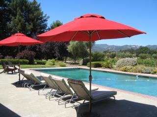 Secluded Sonoma Country Retreat, Views, Pool-Spa - Sonoma vacation rentals