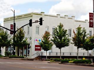 Downtown Starkville Penthouse - Starkville vacation rentals