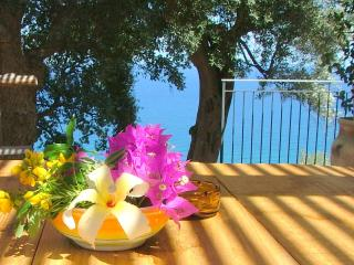 only x 2 Lovers ...of nature .... - Castel di Tusa vacation rentals