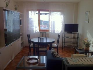 Apartment close to the center of Florence - Lastra a Signa vacation rentals