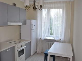 Nice flat in the center - Moscow vacation rentals