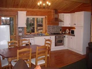 kitchen and dining area - CLOUD CUCKOO LODGE  secluded dark skies cabin. - Castle Douglas - rentals