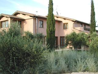 Villa in the Vines Villas near Grosseto, Tuscany - Grosseto vacation rentals