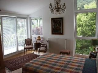 LLAG Luxury Vacation Apartment in Hofheim - 689 sqft, high-class, quiet, central (# 4280) - Hofheim am Taunus vacation rentals