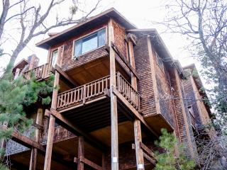 Gorgeous Mountain Escape, 18+ New Beds! - Lake Arrowhead vacation rentals