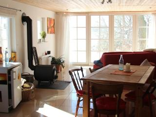 Beautiful 1 bedroom Apartment in Hitzacker - Hitzacker vacation rentals
