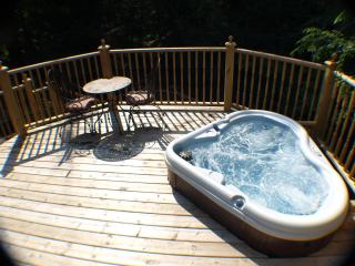 aqua Lemonade Cottage  *$225/NT HOT TUB 2016 $1650 - New Buffalo vacation rentals