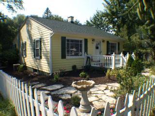 aqua Lemonade Cottage  *$225/NT HOT TUB 2016 $1650 - New Buffalo vacation rentals