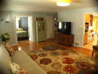 aqua Lemonade Cottage  *12/11-13 $185/NT HOT TUB - New Buffalo vacation rentals