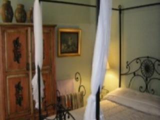 150 year old spanish colonial house, beautifully r - Guadalajara vacation rentals
