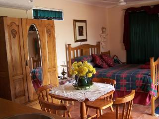Nice Cottage with Internet Access and A/C - Mokopane vacation rentals