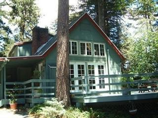Charming Cabin Nestled Among the Pines and Dogwoods - Lake Arrowhead vacation rentals