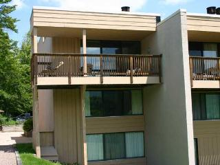 Notchbrook Condo 22ab - Stowe Area vacation rentals