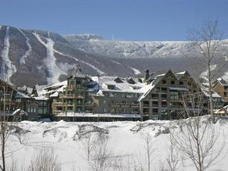 Nice Condo with Deck and Internet Access - Stowe vacation rentals