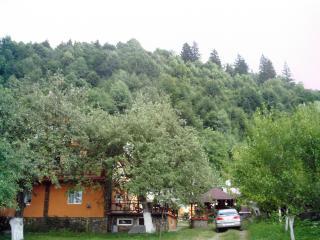 Nice 6 bedroom Villa in Moieciu - Moieciu vacation rentals