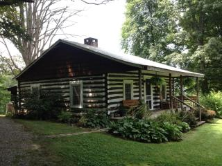**QUAINT CABIN** - DOG FRIENDLY / WI-FI / GAS FP - Asheville vacation rentals