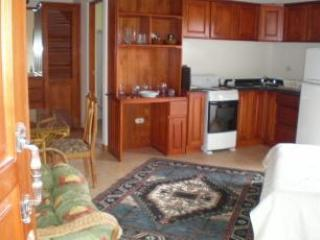 Delightful efficiency between  mountains and  sea - San Isidro de El General vacation rentals