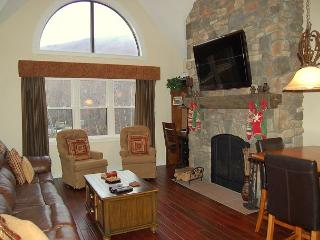 Winterplace 2 Bedroom Plus Loft Ski In/Out - Londonderry vacation rentals