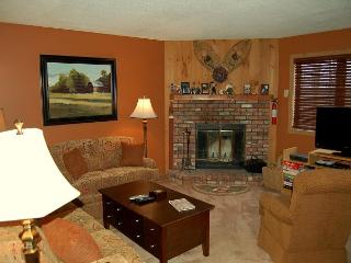 Kettle Brook 2 Bedroom Ski In/Out - Ludlow vacation rentals