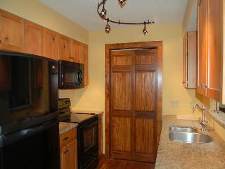 Kettle Brook Two Bedroom Condo - Ludlow-Okemo Ski Area vacation rentals