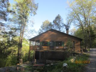 Bear Ridge Cabin - Virginia vacation rentals