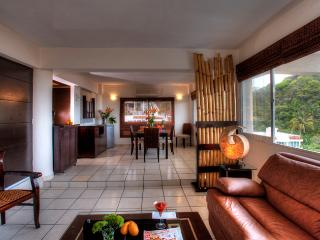Beautiful professionally decorated  1bedroom condo - Puerto Vallarta vacation rentals