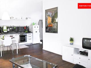 Apartment Roman Area-Centre Town - Turin vacation rentals