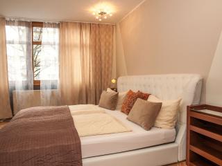 Westpark Apartment (2 Bedrooms-2 bathrooms)Munich Centro - Munich vacation rentals