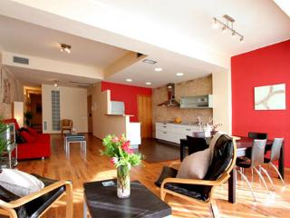 Great and Spacious Apartment 3 br in the center of Barcelona - Barcelona vacation rentals