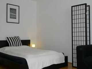 Apartment Boltzmanngasse - Vienna vacation rentals