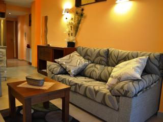 Nice Apartment with Internet Access and Hot Tub - Vilanova de la Sal vacation rentals