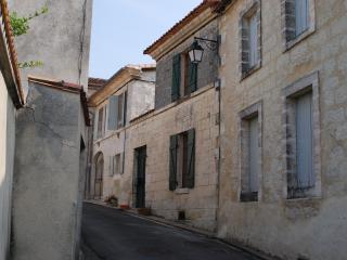 House in Aubeterre-sur-dronne. France - Poitou-Charentes vacation rentals