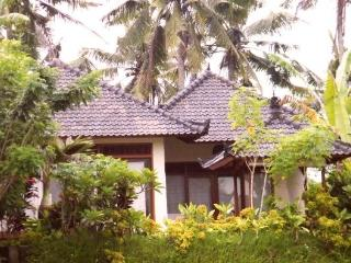 Pool & View Over the Rice Fields in Penestanan - Bali vacation rentals