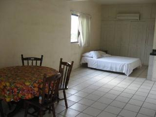 Spacious Studio Apartments, 5 blocks from downtown - Cabo San Lucas vacation rentals