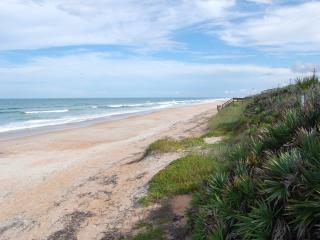 Mako Beach Surf House - with garage & pool - Ormond Beach vacation rentals