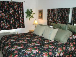 Perfect Condo with Internet Access and A/C - Lutz vacation rentals