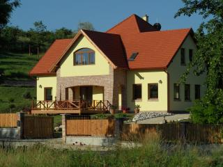 Villa Vinea- peacefull and relaxing vacation house - Etyek vacation rentals