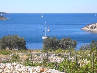 Laurenta 1 - Northern Dalmatia vacation rentals