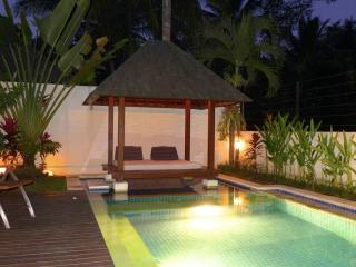 Comfortable 3 bedroom Vacation Rental in Ubud - Ubud vacation rentals