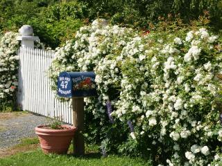 Rose Cottage Bed and Breakfast - Dunedin vacation rentals