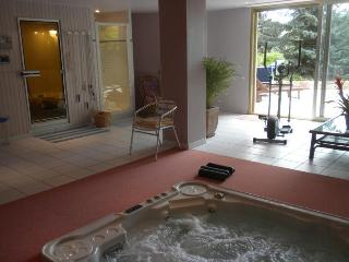 B&B de charme & Spa, Alsace proche Colmar vignoble - Colmar vacation rentals