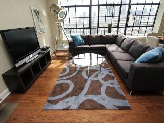 Center City Views, Movie Star Set - Philadelphia vacation rentals