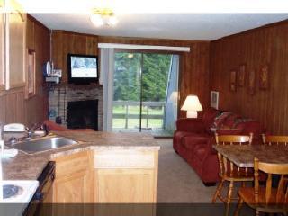 Shamrock Condos at Snowshoe Mountain - Snowshoe vacation rentals