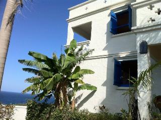 Ocean Front villas on Western PR, Jobos/Guajataca beach - Isabela vacation rentals