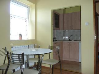 Apartment - Delnice vacation rentals