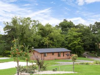 YORKSHIRE LODGE, log cabin, ground floor, hot tub, pet-friendly, in Kiplin, Ref 27294 - Kiplin vacation rentals